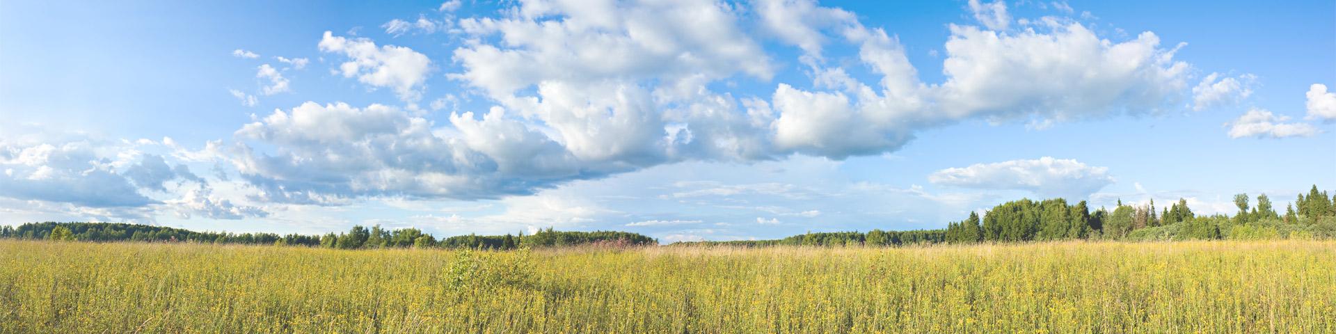 Landschaft AHK ambulanter Pflegedienst mit Wiesen, Wald und Wolken.